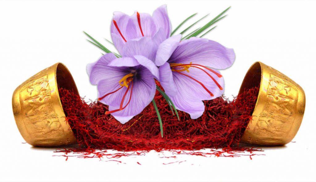 nhụy hoa nghệ tây là gì những công dụng của  nhụy hoa nghệ tây